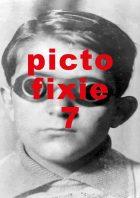 pictotfixie7